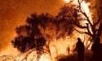 Bombeiros tentam controlar as chamas na cidade de Carpinteria, no condado de Santa Bárbara, Califórnia Foto: HANDOUT / REUTERS