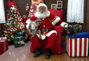 No Ilha Plaza, Bart e Malu posam com o Papai Noel Foto: Divulgação