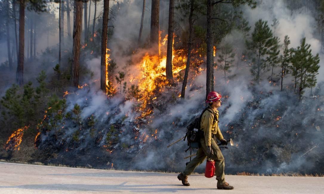 Um bombeiro caminha ao lado de chamas que destroem parte da vegetação do Custer State Park, em Dakota do Sul (EUA). Ventos fortes tornaram a luta contra o fogo ainda mais dura. O incêndio começou no dia 11 de dezembro Foto: Hannah Hunsinger / AP