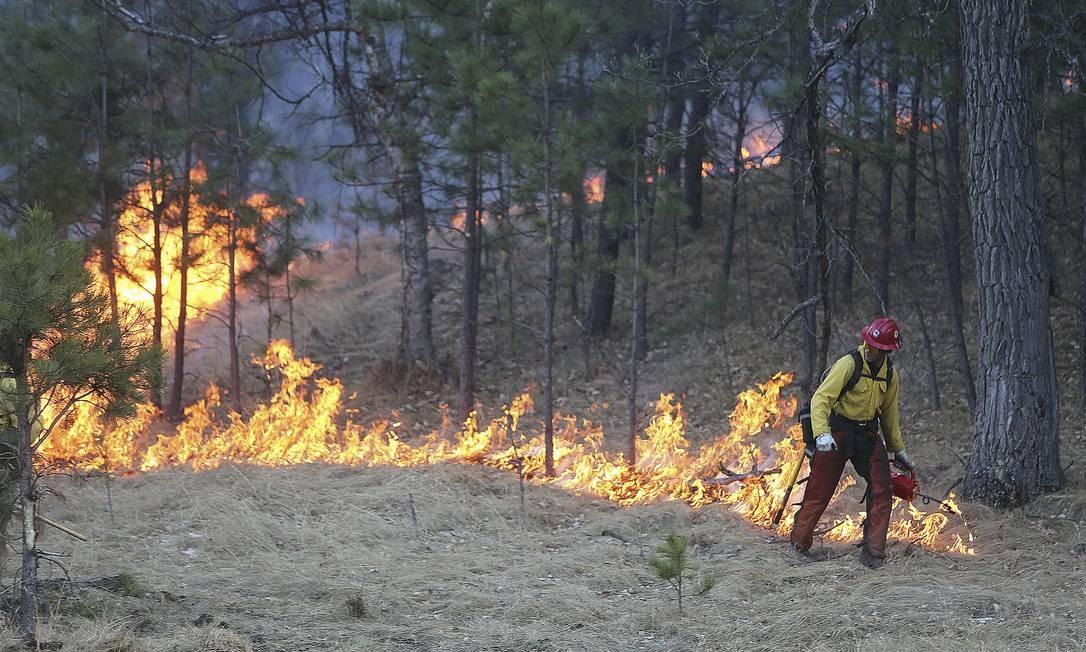 O incêndio no Custer State Park, em Dakota do Sul (EUA), foi causadona pela derrubada de uma linha elétrica. O parque ficou fechado de 11 de dezembro, quando ocorreu o acidente, até 19, quando foi parcialmente reaberto Foto: Jim Holland / AP