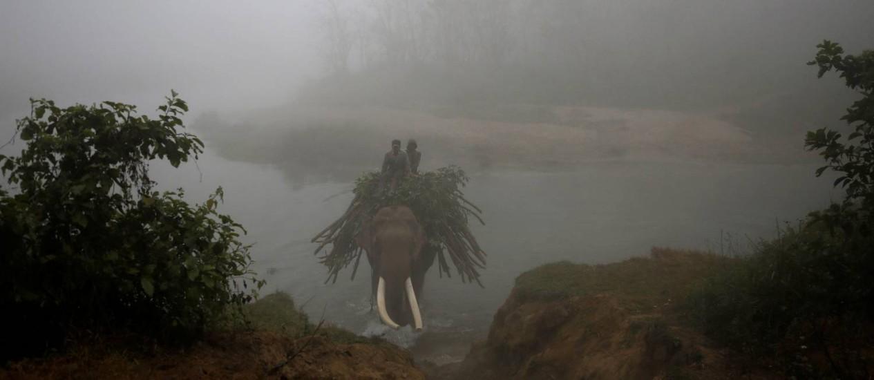 Mahouts, como são chamados no Nepal os treinadores de elefantes, atravessam, no lombo do animal, o Rio Rapti, no Parque Nacional de Chitwan. Festival do Elefante é uma das mais importantes atrações turísticas da região Foto: NAVESH CHITRAKAR / REUTERS