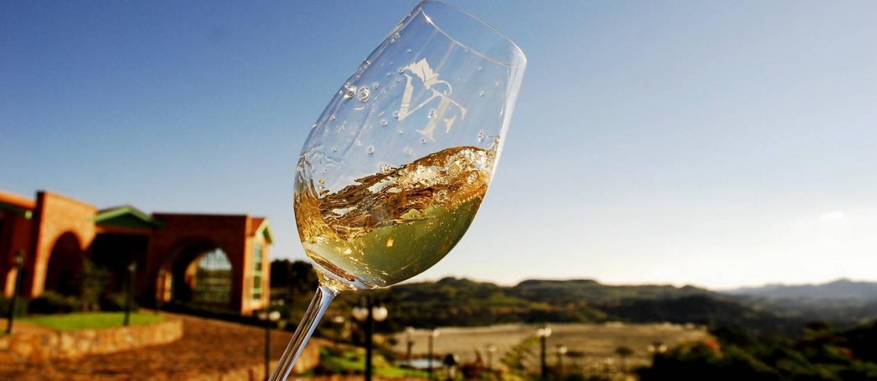 A vinícola Villa Francioni é um das que produzem vinho na região da Serra Catarinense Foto: Divulgação