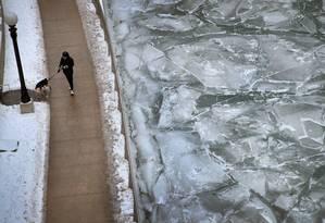 Autoridades pedem que a população proteja seus animais de estimação do frio Foto: SCOTT OLSON / AFP