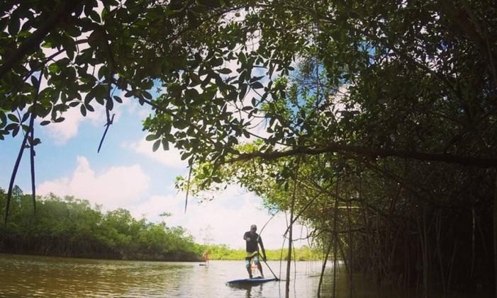 Remando na Amazônia Foto: Divulgação