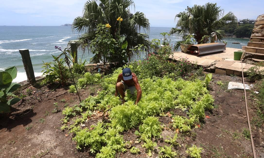 No local, Joaquim plantou uma horta e algumas flores Foto: Fabiano Rocha / Agência O Globo