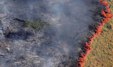 Avanço de queimada na Amazônia: segundo novo monitoramento, 184 km² de florestas foram perdidos em dezembro de 2017 Foto: Bruno Kelly/Reuters/21-8-2017