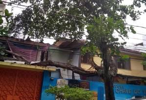 A árvore estava sendo sustentada por cabos de energia Foto: Foto da leitora Fabiana Oliveira Lima