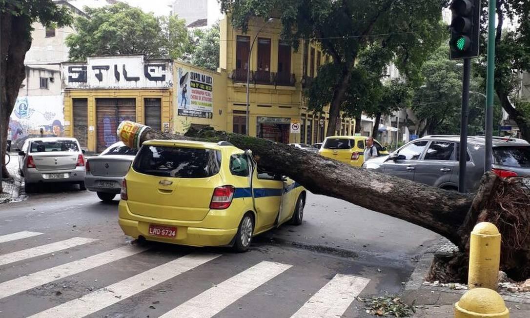 Por volta das 10h30m, a árvore e o carro continuavam no mesmo lugar Foto: Cláudia Meneses / Agência O Globo