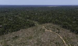 """Desmatamento, acompanhado de fatores como mudanças climáticas e incêndios florestais, é um """"ponto sem volta"""" para transformar a região, diz artigo Foto: BRUNO KELLY/REUTERS/27-7-2017"""