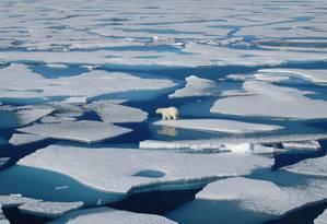 Derretimento das calotas de gelo ameaça o ecossistema ártico Foto: Adrienne Tivy / Universidade de Yale