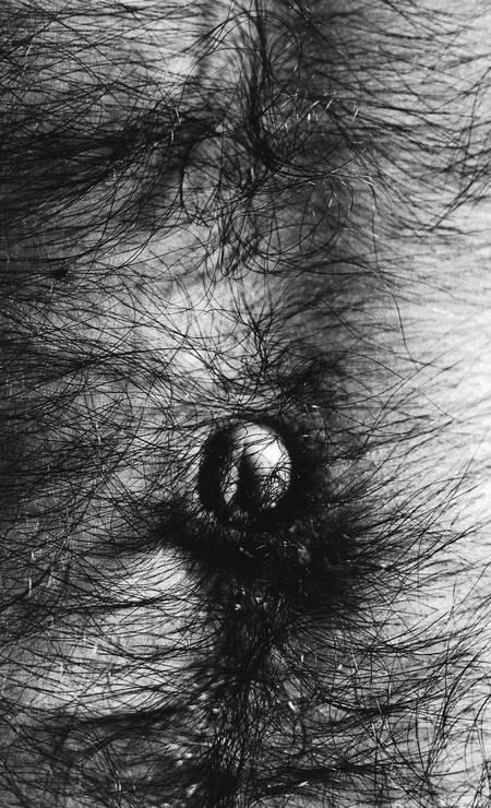 """As obras, selecionadas pelo curador Eder Chiodetto, fazem parte da coleção particular de Robson Phoenix e trazem fotografias das séries """"Symphony of erotic icons"""" (1966-1978), """"A window in Rio"""" (1977-1980) e """"Viagens [Europa, Arte]"""" (1969). Foto: Divulgação"""