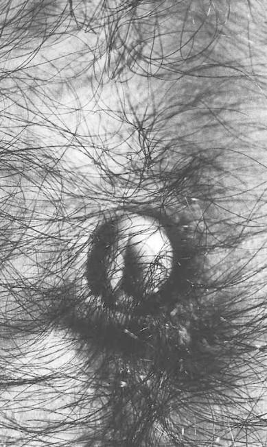 """As obras, selecionadas pelo curador Eder Chiodetto, fazem parte da coleção particular de Robson Phoenix e trazem fotografias das séries """"Symphony of erotic icons"""" (1966-1978), """"A window in Rio"""" (1977-1980) e """"Viagens [Europa, Arte]"""" (1969). Divulgação"""
