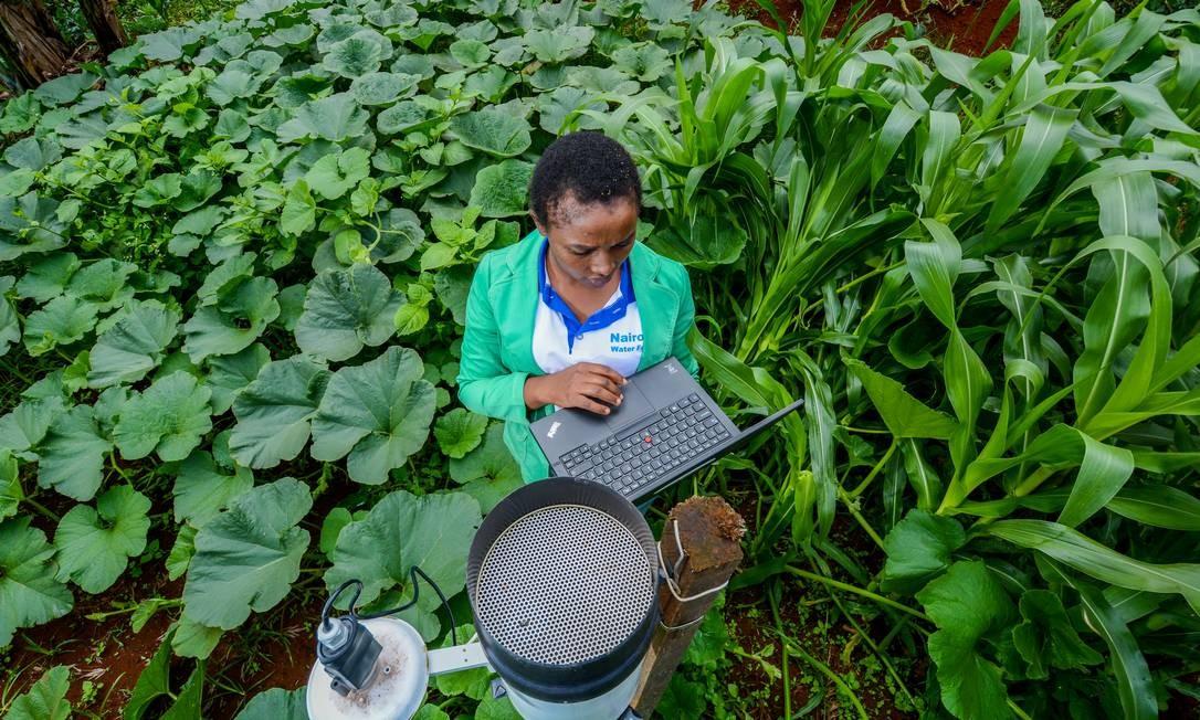 Coleta de água da chuva no Rio Tana, no Quênia: é preciso olhar com atenção para as práticas de comunidades indígenas e tradicionais para desenvolver tecnologias, diz estudo Foto: Divulgação/Georgina Smith/CIAT