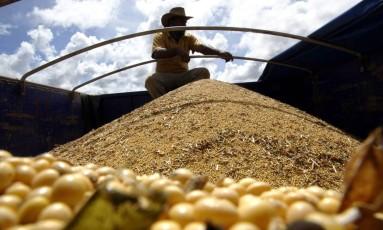 Soja brasileira: 30% da produção vai para a China Foto: Paulo Whitaker / Reuters