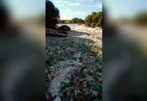 Lixo no rio Tietê, em Salto, comoveu internautas nas redes sociais Foto: Foto do Leitor / Arlei Bertani
