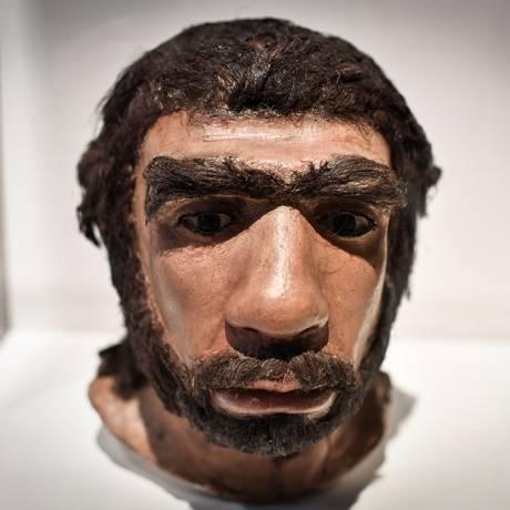 Reconstrução do busto de um Neanderthal exposto no Museu do Homem, em Paris Foto: STEPHANE DE SAKUTIN / AFP