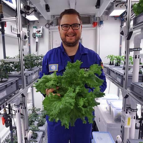 Engenheiro Paul Zabel com folhas verdes cultivadas na estufa EDEN-ISS na estação Neumeyer III na Antártida. Foto: DLR / AP