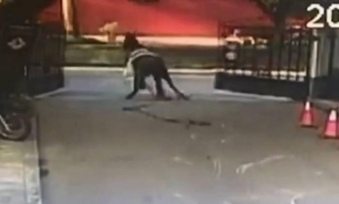 Homem atingido por égua em fuga continua em estado grave