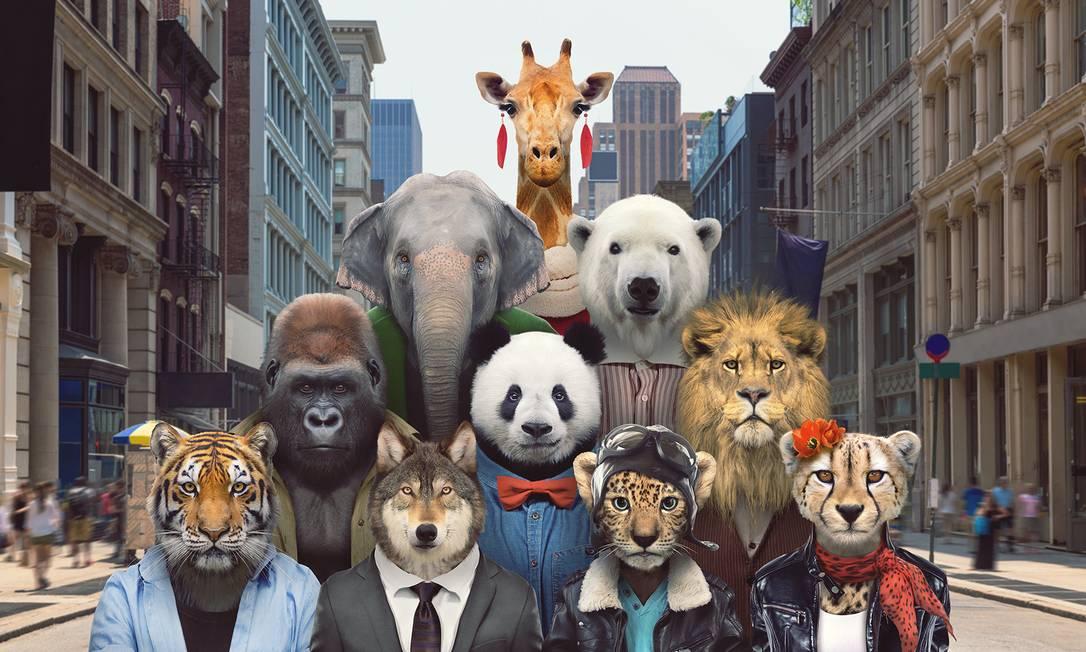 Ilustração mostra os dez animais mais 'carismáticos' identificados pela pesquisa - na ordem: tigres, leões, elefantes, girafas, leopardos, ursos panda, guepardos, ursos polares, lobos cinzentos e gorilas - antropomorfizados em uma cidade Foto: / Divulgação/Zoo Portraits