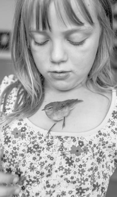 Na categoria Projetos a Longo Prazo, a foto de Carla Kogelman mostra a menina Hannah com Pipsi, um pássaro encontrado num campo da Áustria; a ave recebeu muitos cuidados das crianças de uma comunidade, mas morreu e teve um funeral Carla Kogelman / AP