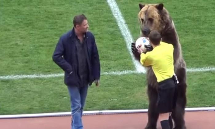 Urso rouba a cena em partida da Terceira Divisão Russa; Assista