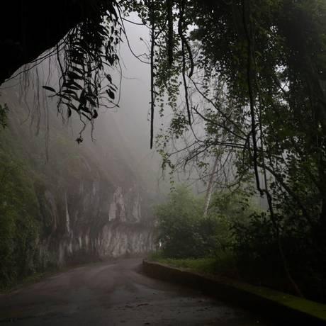 Alto da Boa Vista: madrugada mais fria do ano no Rio é registrada no bairro Foto: Fabiano Rocha em 05/03/2018 / Agência O Globo