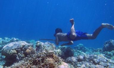 Um mergulhador Bajau caça peixes com uma lança tradicional: por mais de mil anos população sobreviveu coletando seu alimento de baixo da água Foto: Melissa Ilardo