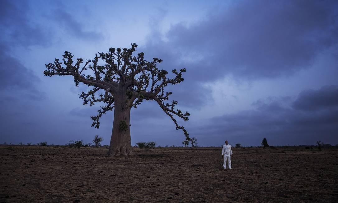 Obra 'A história do futuro — O Baobá', na exposição 'Senhor dos caminhos' Foto: Divulgação