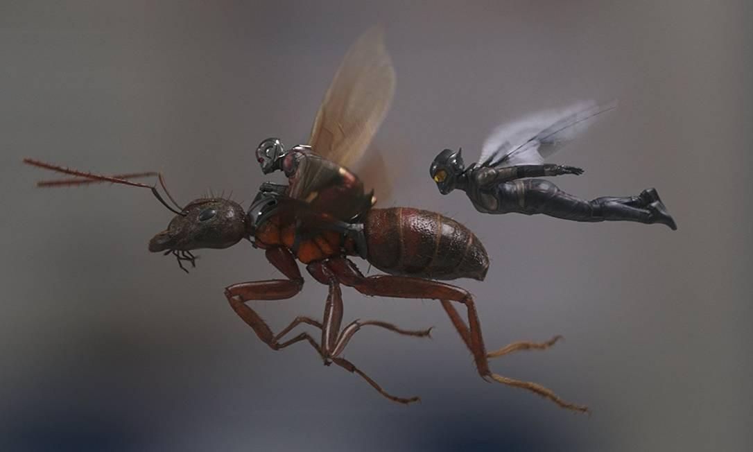 Cena de 'Homem-Formiga e a Vespa' Foto: Reprodução