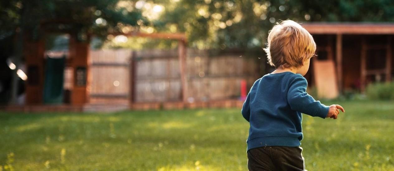 Existem hoje cerca de 40 casos abertos entre Brasil e EUA envolvendo crianças retiradas de solo americano ilegalmente que não foram devolvidas com rapidez Foto: Shutterstock.com/Dean Drobot