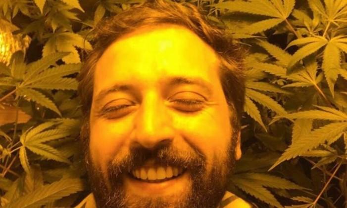 Gregório Duvivier entre pés de cannabis Foto: Reprodução