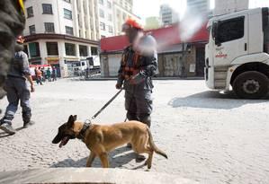 Cães farejadores são usados na busca por desaparecidos em meio aos escombros Foto: Zimel / Agência O Globo