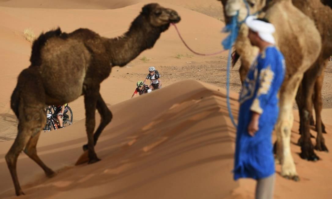 Entre camelos, ciclistas disputam a Titan Desert Franck Fife / Agência O Globo