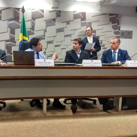 Fernando de Carvalho Lopes depõe na CPI dos Maus-Tratos Foto: Divulgação