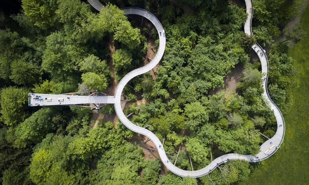 Visto do alto, tudo ganha uma nova perspectiva. Essa imagem mostra a trilha de Necki, em Mogelsberg, na Suíça, com 500 metros de passarela junto a copa das árvores. De cima não parece tão alto, mas em alguns momentos ela atinge 50 metros acima do solo. Foto: Gian Ehrenzeller / Keystone / AP