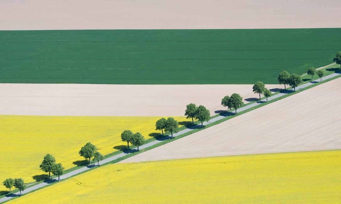 Parece um quadro modernista, mas é apenas um flagrante da zona rural de Laatzen, perto de Hanover, no norte da Alemanha. Foto: Julian Stratenschulte / AFP