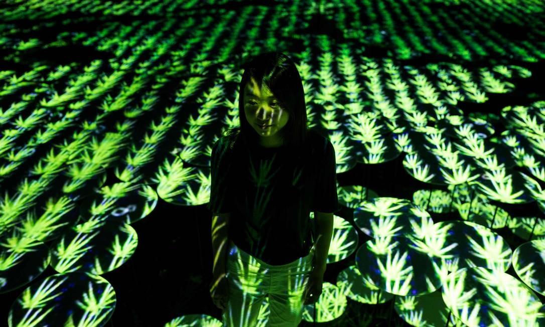 Campo de arroz digital, uma das atrações do Mori Building Digital Art Museum, que abre no próximo dia 21 em Tóquio Foto: BEHROUZ MEHRI / AFP
