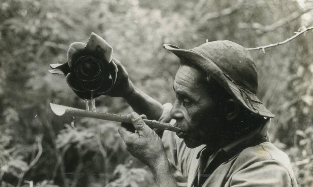 """""""Beste"""": o filme de Sergio Muniz, de 1970, com produção de Thomaz Farkas, é um dos destaques do canal Foto: Divulgação / Divulgação"""