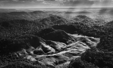 Trilhas abertas por madeireiros na Floresta Amazônica, em registro feito por Sebastião Salgado: hoje, o fotógrafo elabora ambicioso projeto de proteção da região Foto: Sebastião Salgado/Amazonas Images