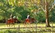 Passeio a cavalo no Hotel Fazenda Mazzaropi, em Taubaté, no Vale do Paraíba (SP) Foto: Divulgação