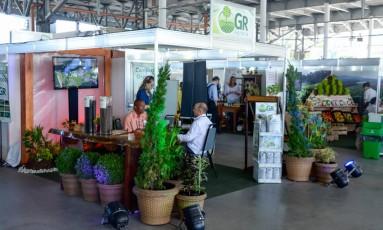 Green Rio acontece de quinta a sábado na Marina da Glória Foto: Divulgação