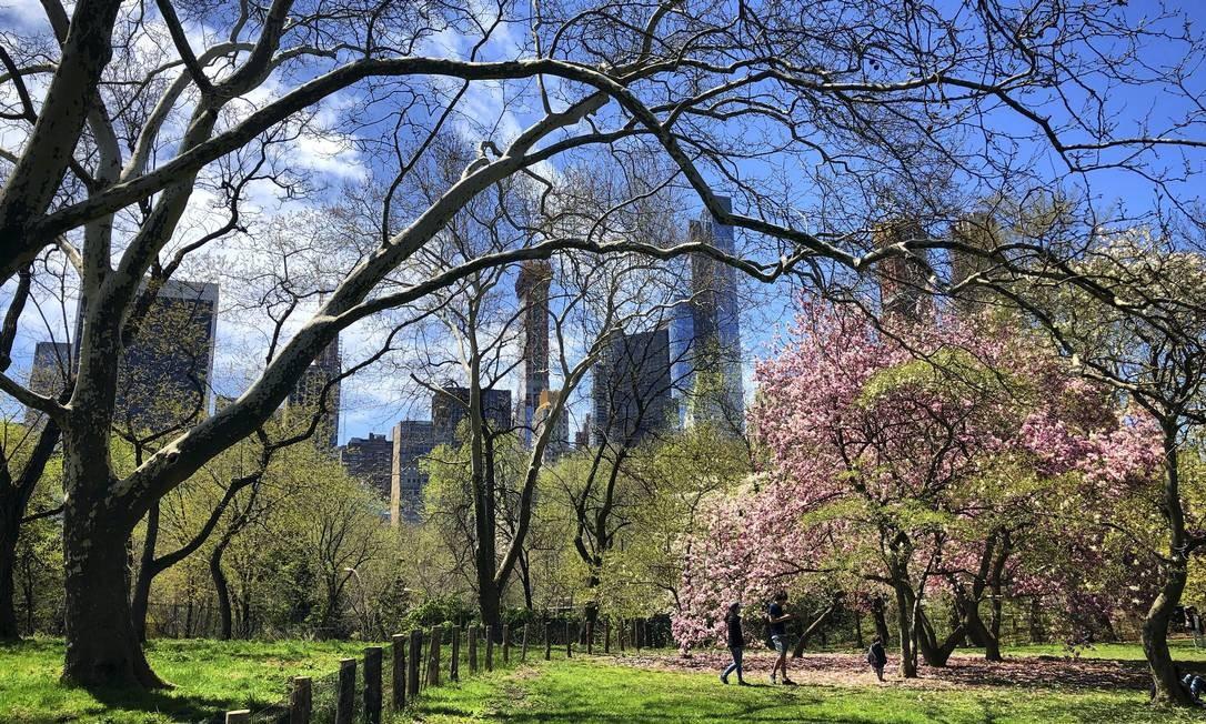 Parte dos prédios de Manhattan vistos do Central Park, entre árvores ainda peladas pelo inverno passado e outras tomadas pelas flores da estação atual Foto: Daniel Marenco / O Globo
