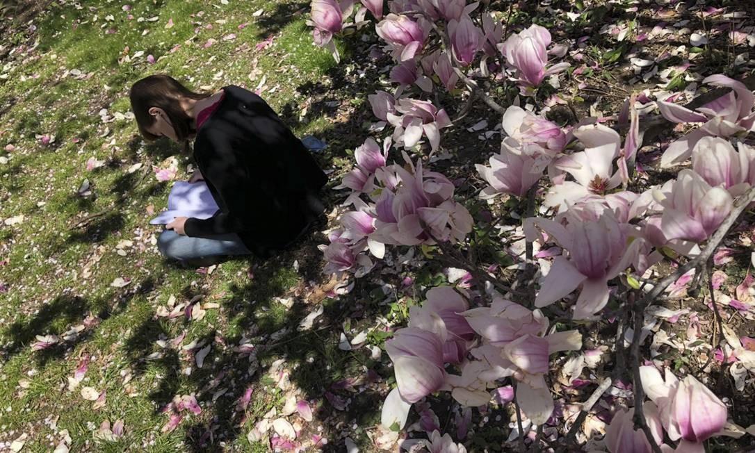 Durante a primavera, Nova York consegue ficar ainda mais bonita. As flores cobrem os parques, praças e ruas da cidade Foto: Daniel Marenco / O Globo
