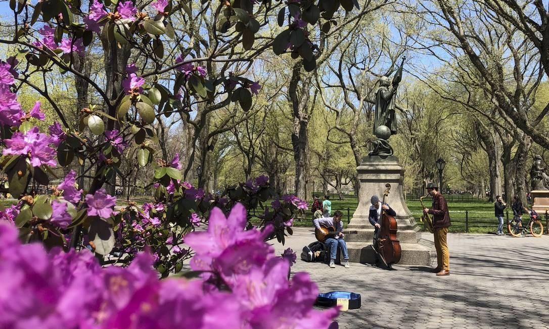 As flores compõem o cenário para os músicos que tocam no Central Park Foto: Daniel Marenco / O Globo