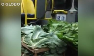 Caixas de verduras dentro do coletivo Foto: Reprodução