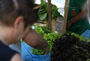 Na zona sul, na feira da Rua da Glória, o alface é vendido a R$ 12 Foto: Pedro Teixeira / Agência O Globo