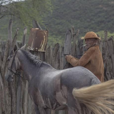 A volta da chuva no último verão não foi suficiente para moradores como o vaqueiro Virgílio José da Rocha, de 74 anos, se recuperarem das perdas impostas pela seca Foto: Daniel Marenco