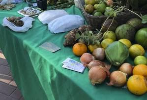 Sustentável. Mesa com alimentos para troca na feira do Engenho do Mato Foto: Priscilla Aguiar