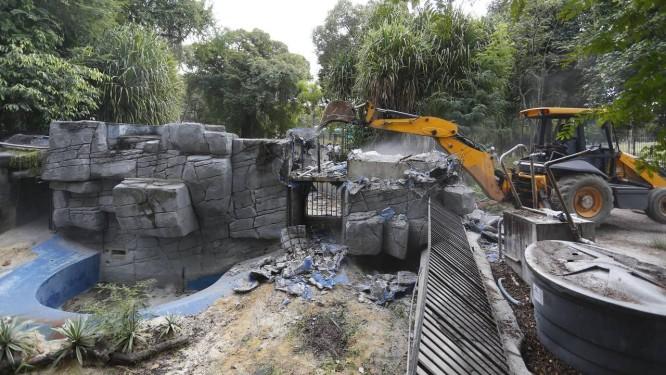 A demolição do antigo espaço do lobo marinho marca o começo das obras do novo zoológico do Rio Foto: Pablo Jacob / Agência O Globo