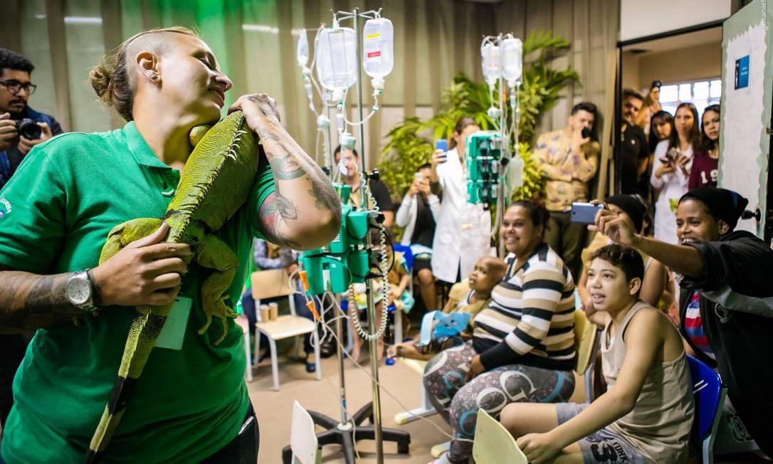 Crianças e adultos observam a iguana em hospital infantil Foto: Ana Elizabeth / Divulgação